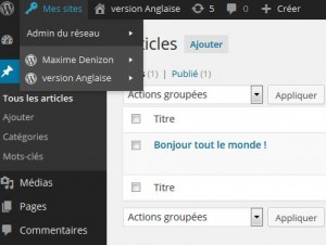 multilinge mulisite WordPress
